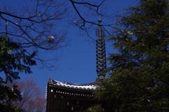 三重塔の残雪