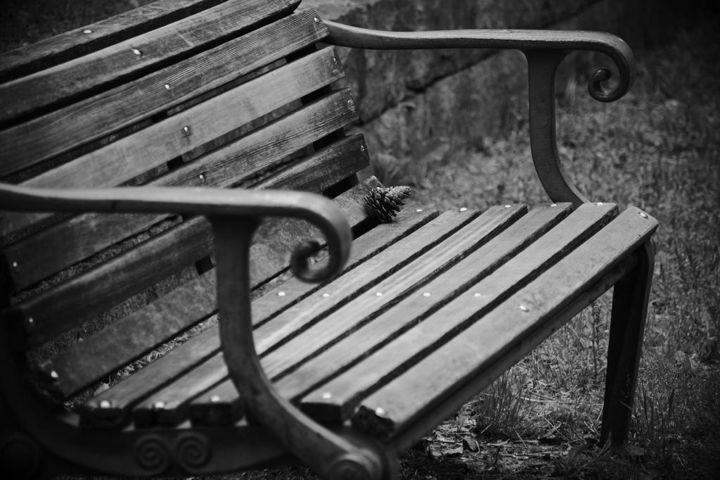ベンチに・・