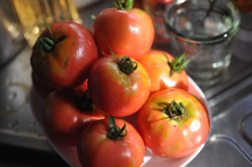 朝採れトマト