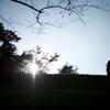 Autumn Sunset 1009