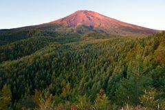 平日の富士山381