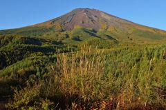 平日の富士山382