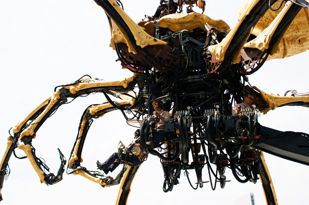 蜘蛛を操る人