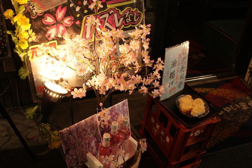 点灯の小さな桜
