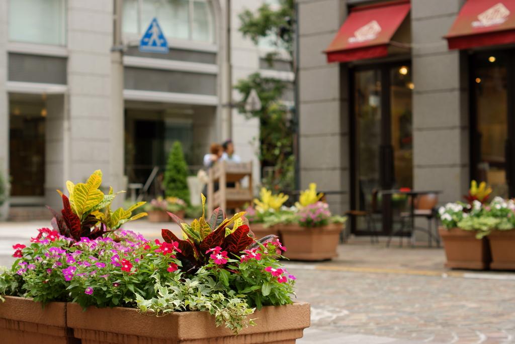 花のある街