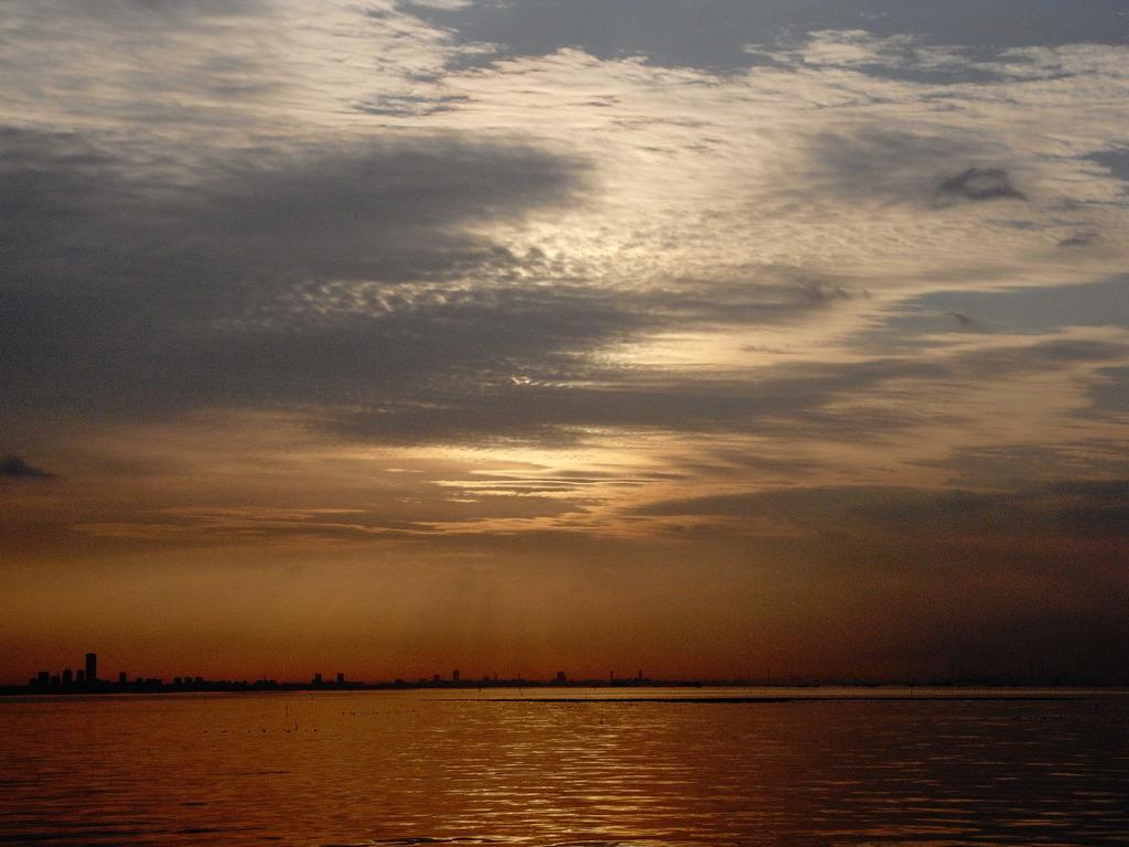 市川塩浜の朝 1