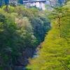 八ッ場ダムと渓谷