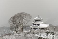 雪の大洲城