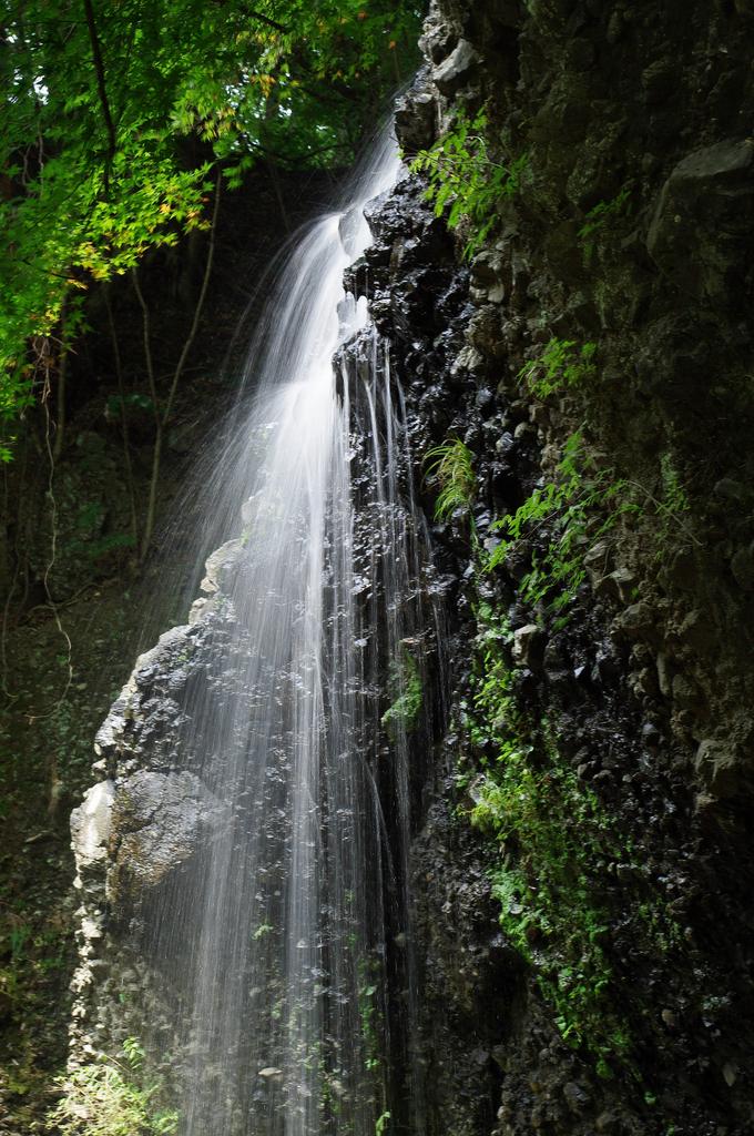 月待の滝_2
