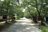 秋月杉ノ馬場