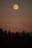 2回目の満月
