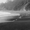 霧の中の砂浜