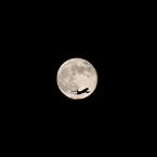 CANON Canon EOS Kiss X2で撮影した乗り物(心の翼)の写真(画像)
