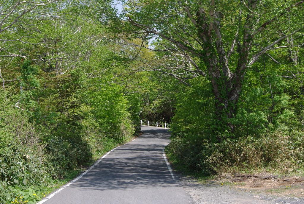 谷地温泉に続く道
