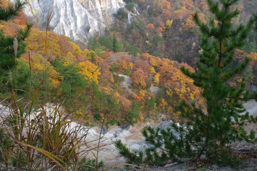 日本キャニオンの谷側