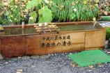 沸壺池の清水