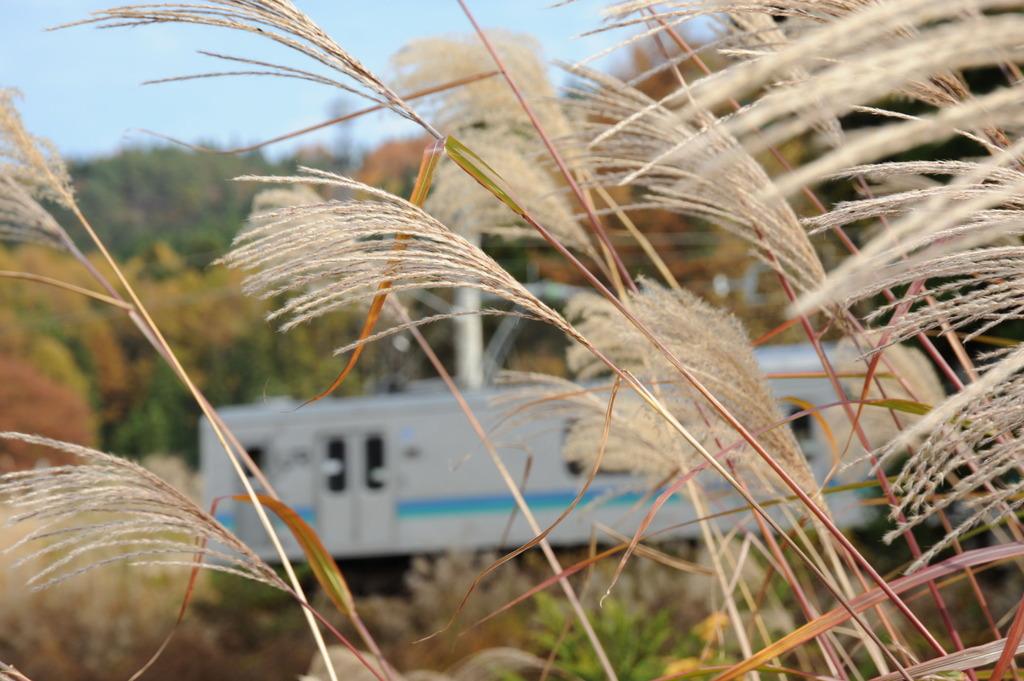列車通ります。