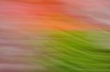 colour stream