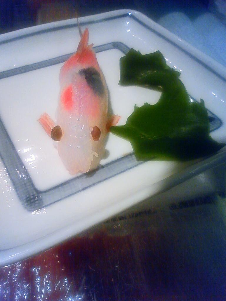 鯉が一匹釣れました