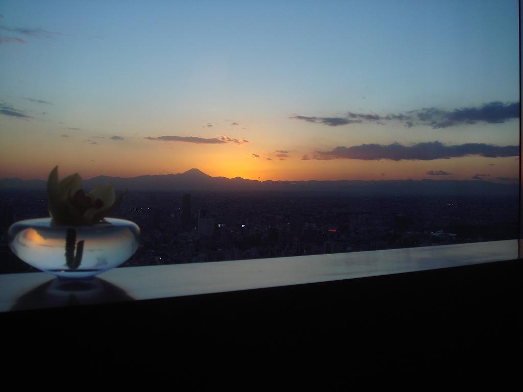 富士山を遠くに眺めながら①