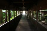 光への回廊