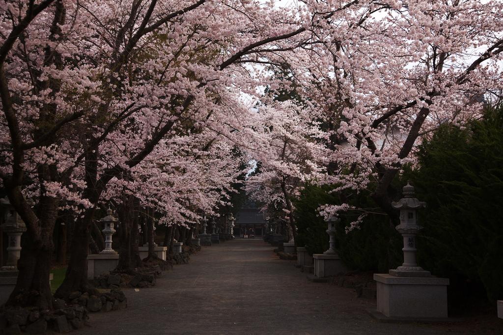 富士御室浅間神社