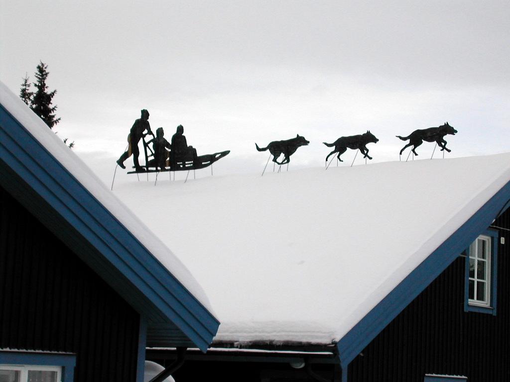屋根の上には - 犬ぞり