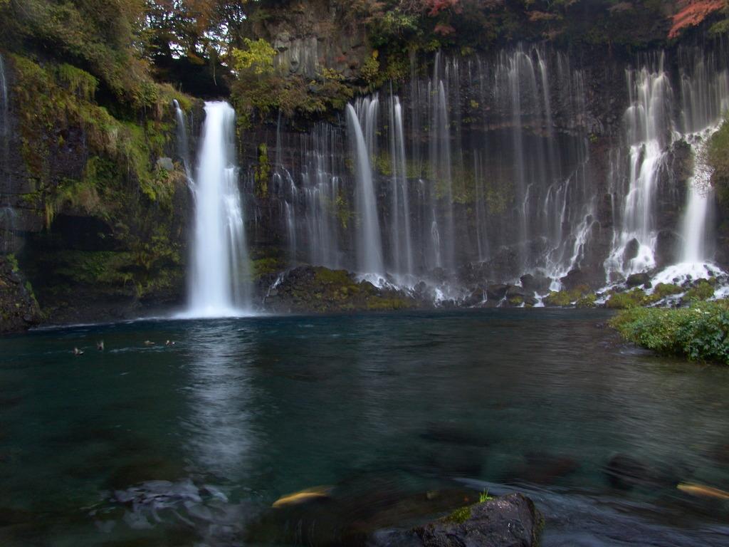 白糸の滝に、、、