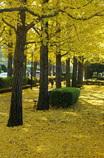 駅東公園(2334)