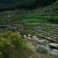 RICOH RICOH GX200で撮影した風景(R1124581)の写真(画像)