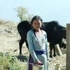 ネパール15