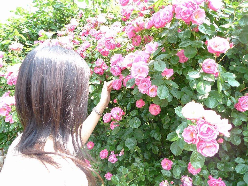 バラと彼女 2