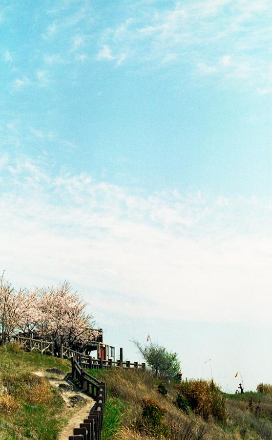 09-spring-01
