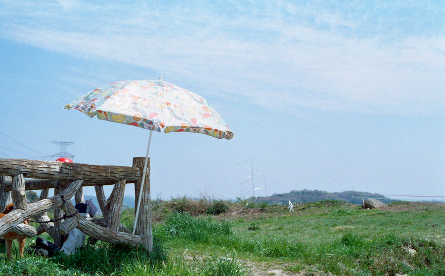 09-spring-02