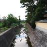 NIKON NIKON D60で撮影した風景(亀もいる)の写真(画像)