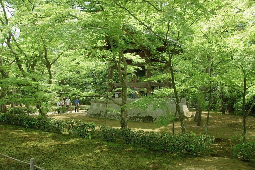 金閣寺の新緑