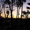 夕日と風船と時々ちょんまげ。