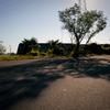 20110924-SDIM3094
