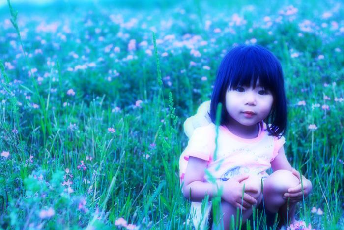 れんげ畑と我が娘