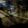 CANON Canon EOS 7Dで撮影した人物(Under the tree)の写真(画像)
