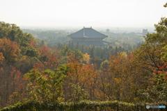 若草山ドライブウェイ 秋の古都奈良