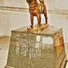 紀州犬の銅像 01/ HDR