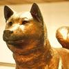 紀州犬の銅像 02/ HDR
