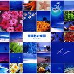 その他のカメラメーカー その他のカメラで撮影した風景(楽園エトセトラ)の写真(画像)