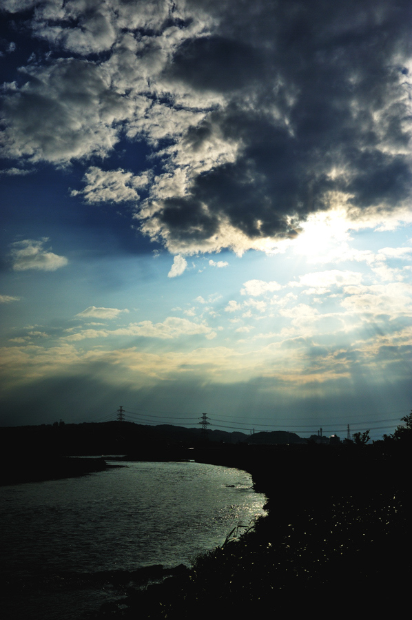 多摩川にて。