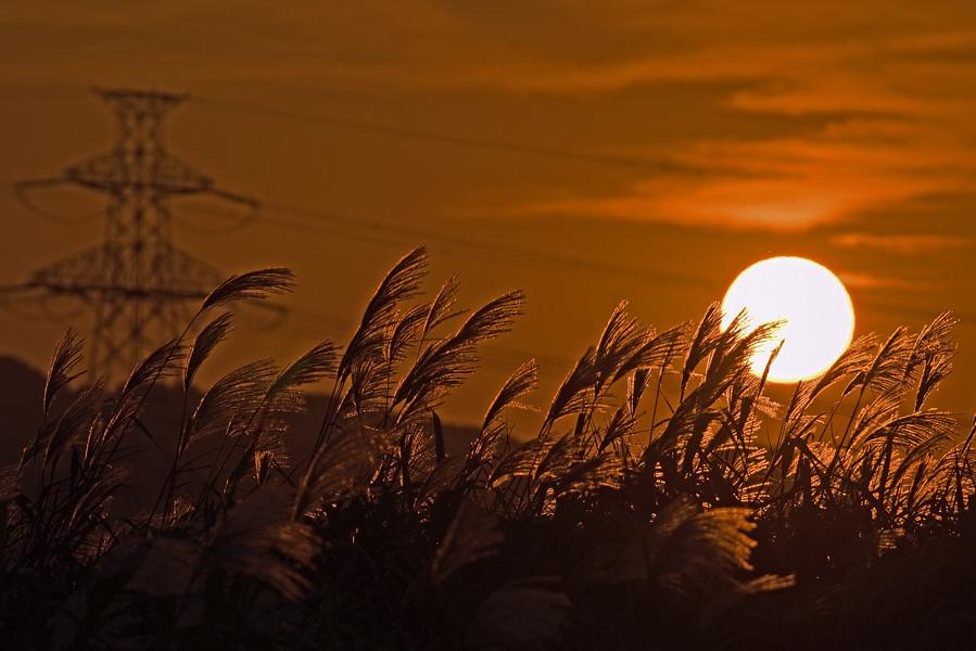 秋の夕陽、、、。