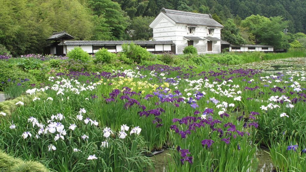 花菖蒲と加茂荘の蔵