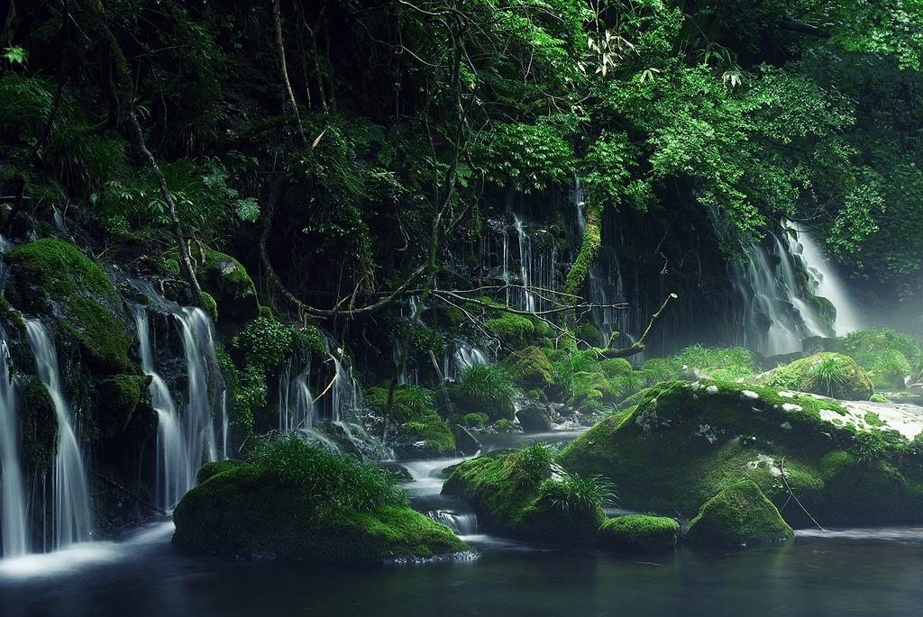 苔むす元滝