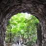NIKON NIKON D90で撮影した風景(DSC_0192)の写真(画像)
