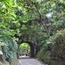 NIKON NIKON D90で撮影した風景(DSC_0191)の写真(画像)